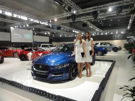 01 Jaguar 01828