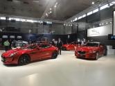 01 Jaguar 01830